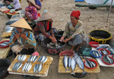 lokale-vismarkt-op-lombok